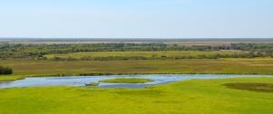 Window to Wetlands