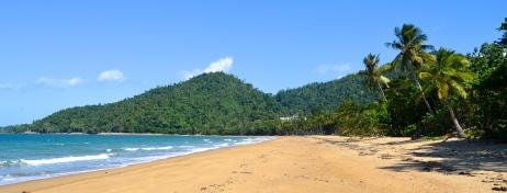 Daintree Naitonalpark - where the Rainforest kisses the Sea
